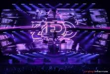 ZEDD web (44 of 59)